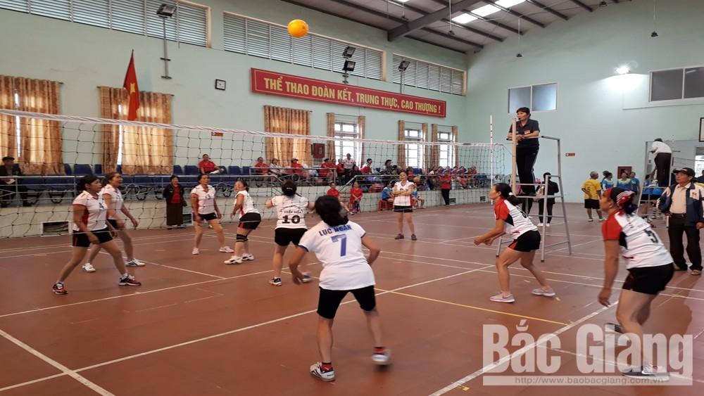 Bắc Giang tổ chức Giải bóng chuyền hơi người cao tuổi